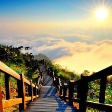 przepiękne:)  Tajwan