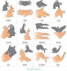 Jak zrobić ciekawe cienie na ścianie...;)