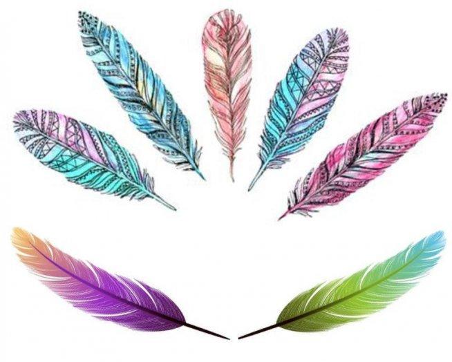 zmywalne tatuaże piórka, kolory dowolne :)od TOTUTATU
