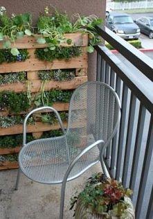 Na balkonie też da się stworzyć kawałek całkiem przyjemny ogródeczek :)