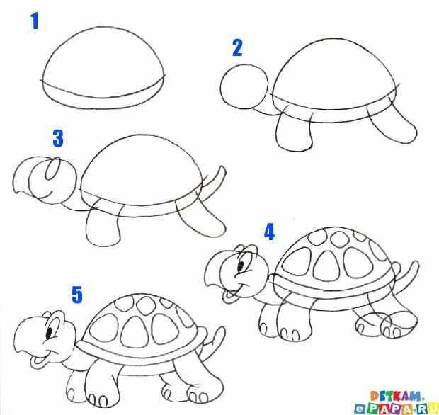 super żółwik
