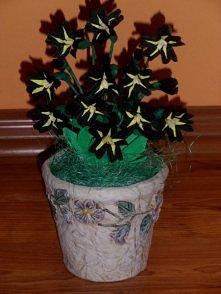 czarne kwiatki z krepiny