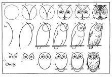 jak narysować sowy
