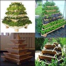rewelacyjny na mały ogródek warzywny ;)