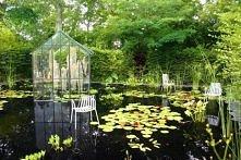 Ogród pokazowy w Chaumont - ogród z oryginalną podłogą, którą stanowi tafla w...