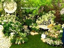 Biały ogród sam w sobie jes...