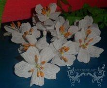 Kwiatki wiśni z krepiny ;3