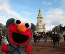 Elmo na wycieczce!
