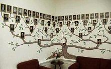 drzewo  home design