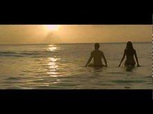 Simple Plan - Summer Paradi...