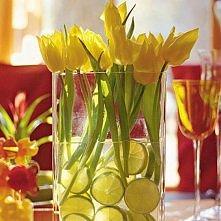 Limonka z tulipanami czy tulipany z limonką?