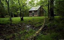 chatka w lesie :)