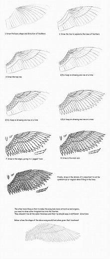 skrzydło
