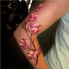 Magnolia piękna :)
