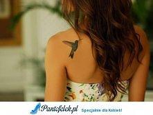 Koliber, piękny tatuaż