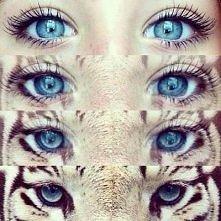 Aw... te oczy ;3