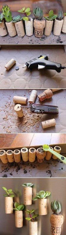 diy, wine, cork, garden