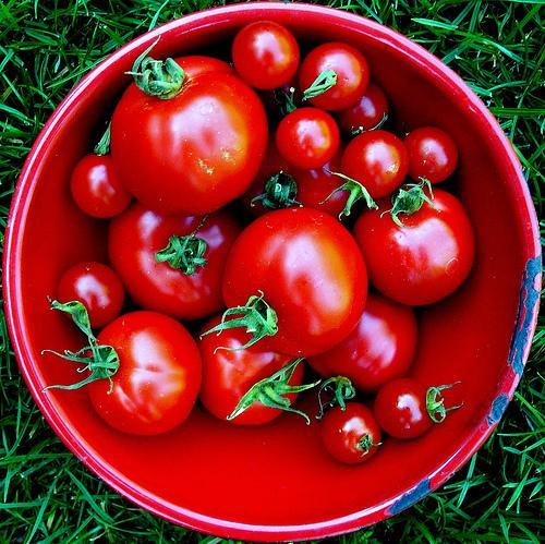Chcecie schudnąć? Jedzcie pomidory :) Czytajcie po kliknięciu :)