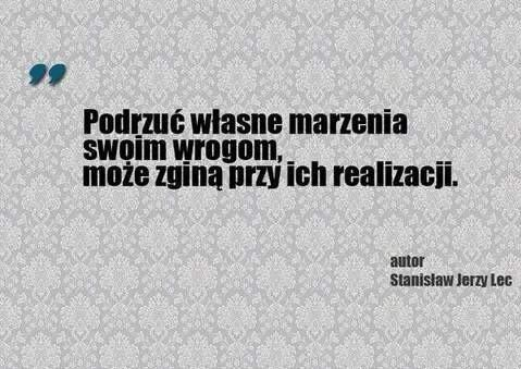 Stanisław Jerzy Lec 3 I Love You Na Cytaty Zszywkapl