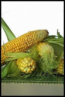 Kukurydza na dwa sposoby