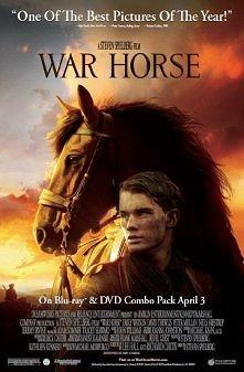 War horse (Czas wojny)