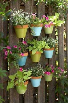 Jak udekorować swój ogród? Mamy pomysł=)