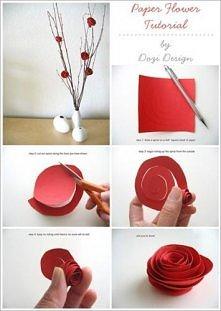 papierowe kwiatki :)