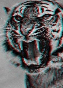 #Roar