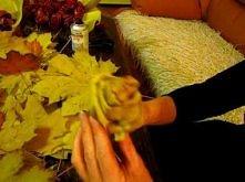 różyczki z liści klonowych-...