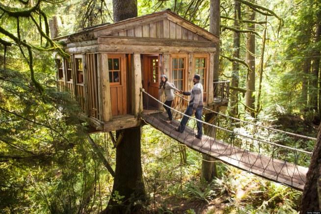 Domek Na Drzewie Na Zwariowany świat Zszywka Pl