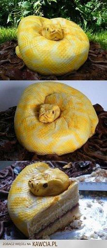 Pomysł na torta genialny ;D