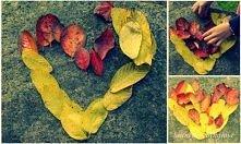 jesień :)