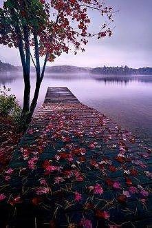 jesień;)