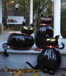 a może czarne kotki ?? :D