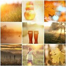 Jesień,jesień,jesień