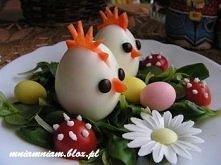 Bracia-kurczaczki na łące