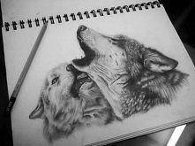 Rysunek wilki :)
