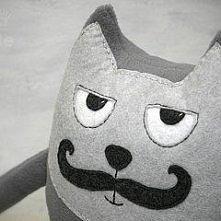 Kot wąsacz zblazowany . Inn...