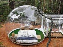 sypialnia w lesie o.O