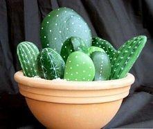 Malowane kamienie jak kaktusy . A najlepsze nie musisz ich podlewać i zawsze ...
