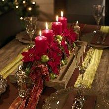 gwiazdy betlejemskie jako ozdoby świąteczne