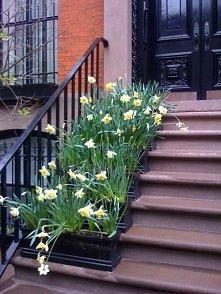 *** świetny pomysł na wiosn...
