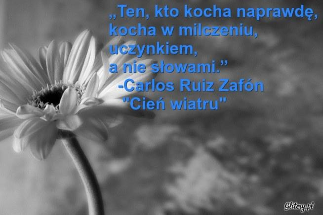 Carlos Ruiz Zafón Cień Wiatru Na Cytaty I Humor
