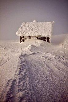 Śnieżka - Chatka Puchatka, ...
