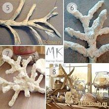 koralowce - instrukcja