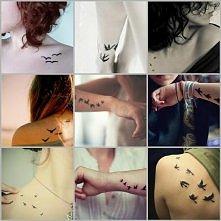 Mix tatuaży ptaki