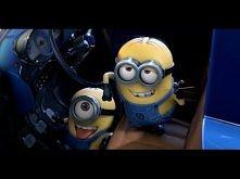 Minions Behind The Wheel