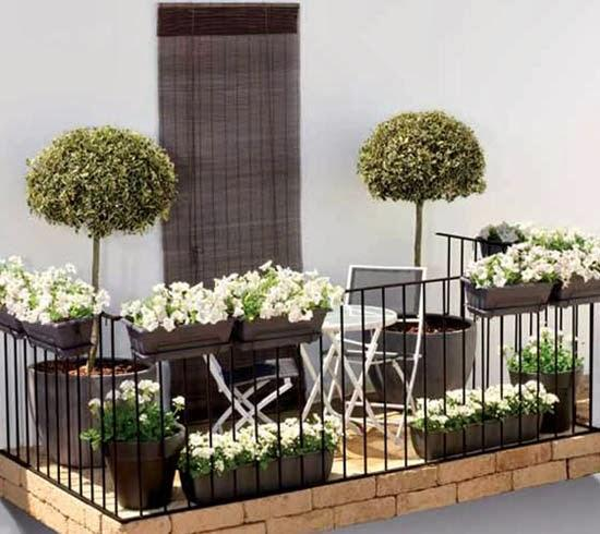 Jakie Kwiaty Wybrać Na Balkon Kliknij W Zdjęcie Na Balkony