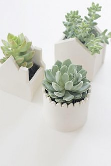 domki z zimnej porcelany - tutorial na blogu :)