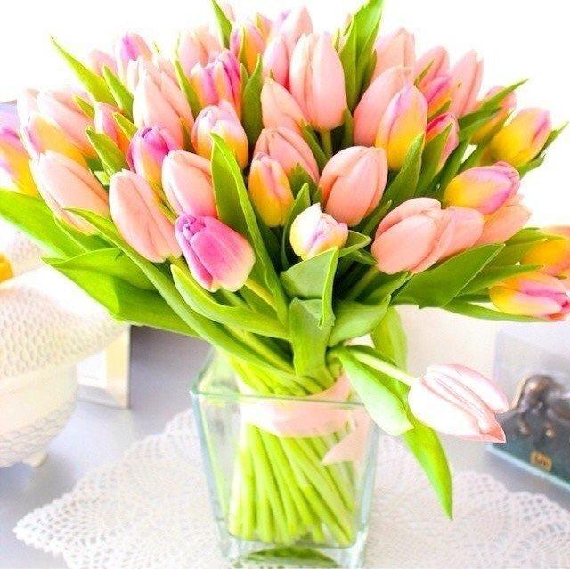 Dziś mamy dla was taki cudny bukiet tulipanów <3 Jakie kwia.. na ...